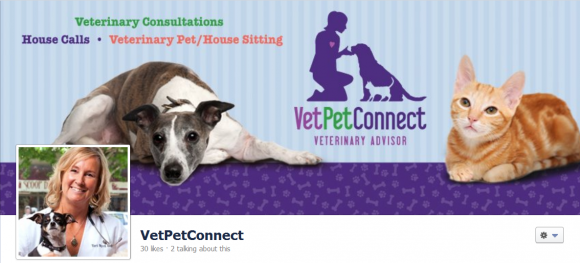 VetPetConnect Facebook Cover