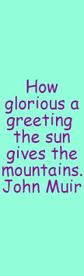 Text-to-Image13