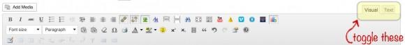 WP visual vs text editor 3