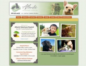Atlantic Veterinary Hospital Seattle
