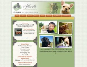 Atlantic Veterinary Hospital Seattle
