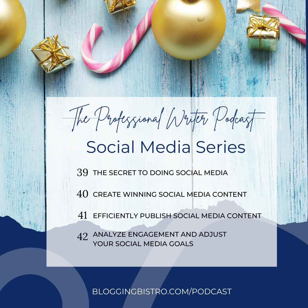 The Professional Writer Podcast with Laura Christianson   BloggingBistro.com   Episodes 39-42